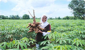 Meningkatkan Kualitas Hidup Para Petani Ubi Di Makasar